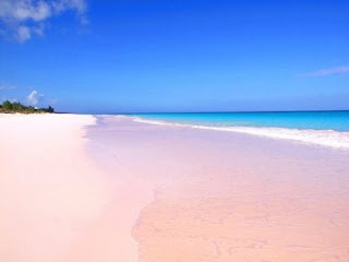 pink sand beach...I will see all the different colored sand beaches!
