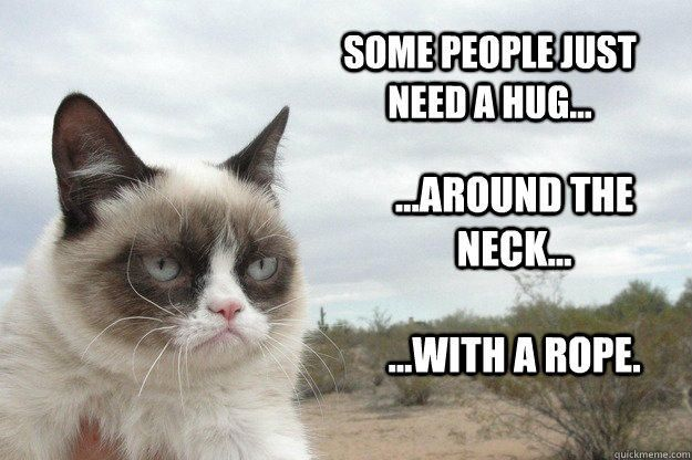 Some people just need a hug... ...around the neck... ...with a rope.  Grump Cat