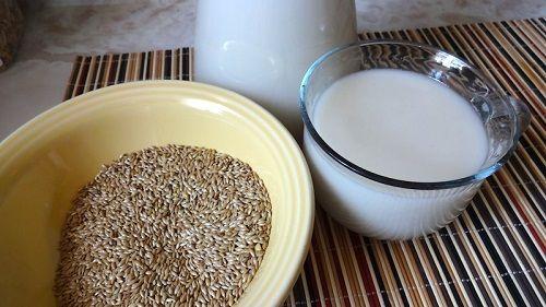 O consumo de leite de alpiste emagrece, combate diabetes, pedras nos rins e hipertensão. Aprenda a fazer em casa.