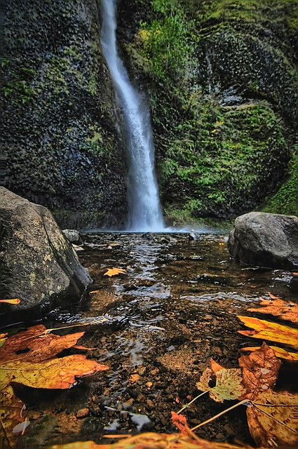 Horse Tail Falls, Columbia River Gorge, Oregon, United States.