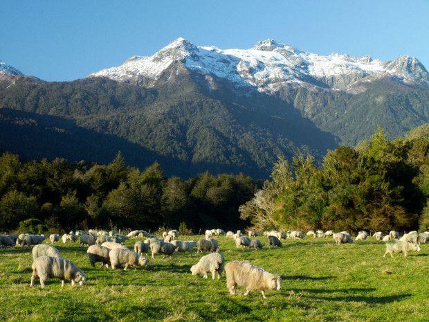 Pumalin Park, Chile