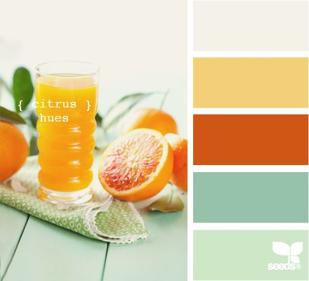 #citrus #hues #palette #scheme   http://design-seeds.com/index.php/home/entry/citrus-hues ... #color #colorpalette #colorscheme
