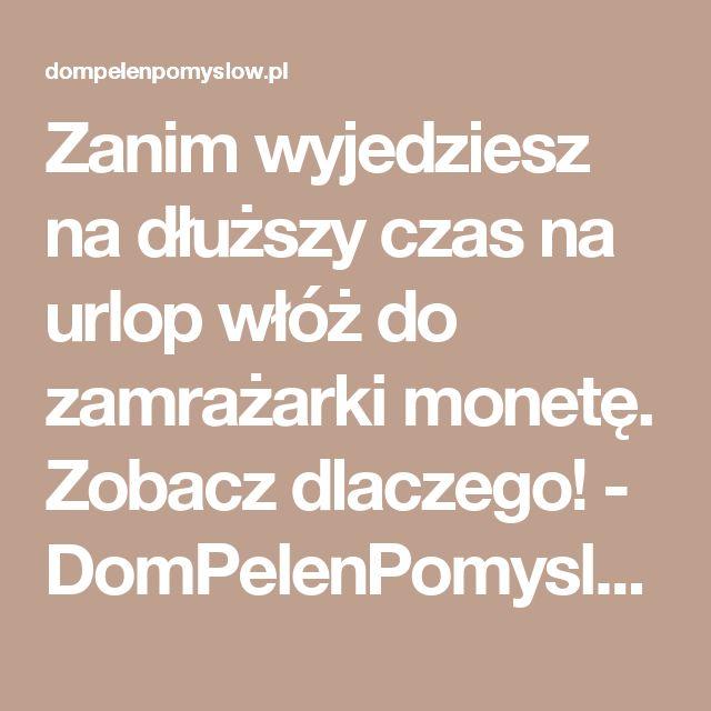 Zanim wyjedziesz na dłuższy czas na urlop włóż do zamrażarki monetę. Zobacz dlaczego! - DomPelenPomyslow.pl