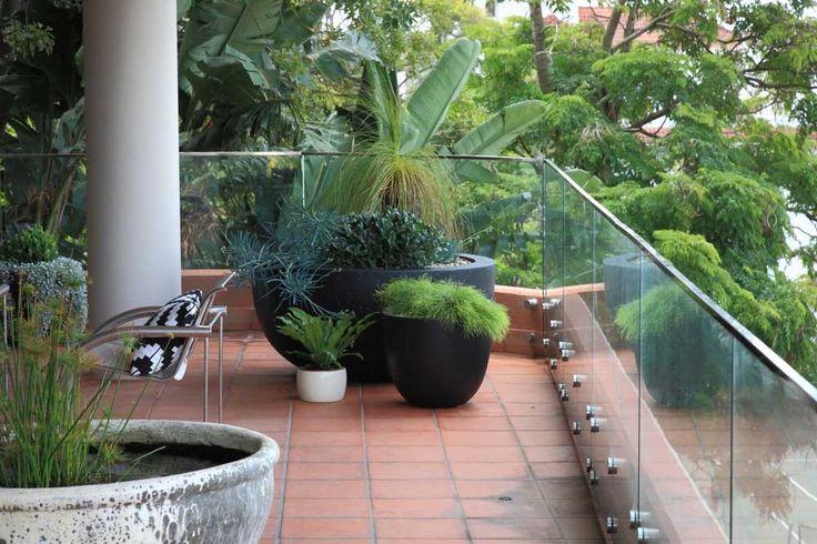Eastern Suburbs Balcony Garden - Sydney