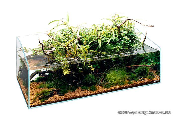 ADAは水槽や照明・CO2添加器具などの製品をデザイン・開発し、水草が茂り、熱帯魚が泳ぐネイチャーアクアリウムを提唱しています。