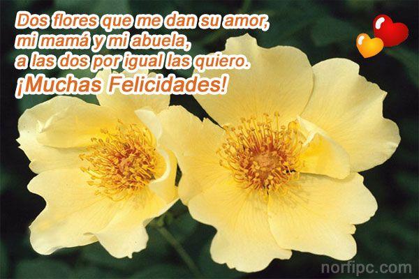 Dos flores que me dan su amor, mi mama y mi abuela, a las dos por igual las quiero. ¡Muchas Felicidades!