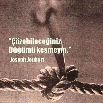 Çözebileceğiniz düğümü kesmeyin.   - Joseph Joubert