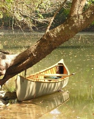 Beautiful wooden canoes for sale!