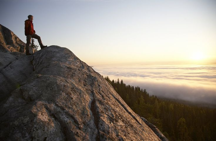 The Finnish National Landscape.  Photo: Koli Tourist Information