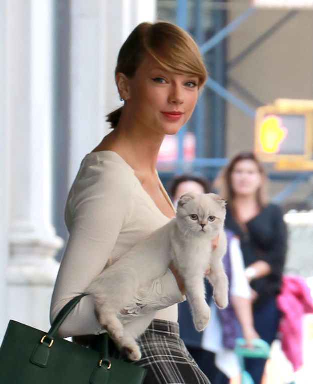 Which Of Taylor Swift's Cats Are You?  OLIVIA BENSEN  boom i was in a music vid so....
