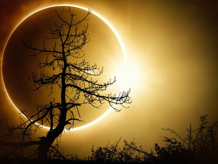 Eclipse of the sun. God's cool creations. Painting inspiration, would make an awesome painting, even a beginner painting idea!