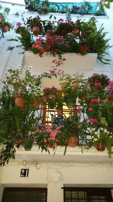 Balcones de una calle de Peñiscola