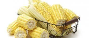 Simpatia: A simpatia do milho é ideal para quem precisa de dinheiro extra urgentemente. Ela é simples de ser realizada, utiliza poucos materiais, porém é muito eficaz.