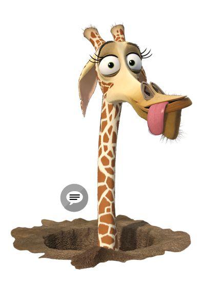 46 best giraffe reference images on pinterest giraffes - Girafe madagascar ...
