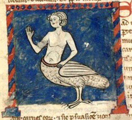 Medieval Bestiary : Siren Gallery