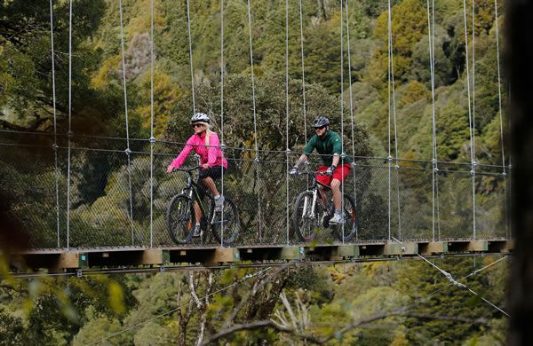 New Zealand Cycle Trail - Timber Trail (Whanganui)