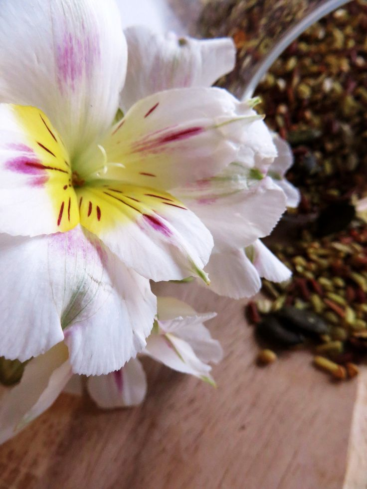 Tiger lilies & super rice