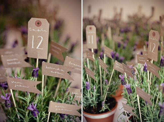 Find This Pin And More On Wedding Favours Mini Lavender Plants In Pots