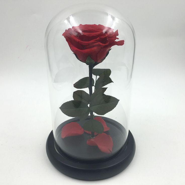 Маленький принц Стеклянная крышка Сохранилась роза Бессмертной красные розы на день, Рождество, свадебные подарки Оптовой Валентина