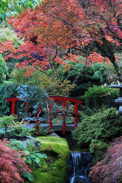 2174 best dream garden images on pinterest landscaping for Landscaping rocks victoria bc