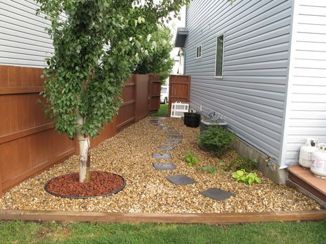 Garden and Patio, Narrow Side Yard House Design With Brown Gravels And Wooden Fence, Trees And Stone Footpath Plus Wooden Gate Ideas ~ Side Yard Ideas
