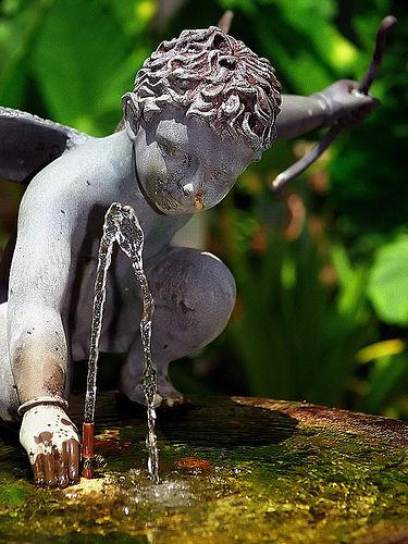 "New Orleans - French Quarter ""Angel In Fountain - Le Petit Theatre"""