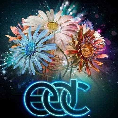 Road to EDC 2015 preview by 12BM on SoundCloud