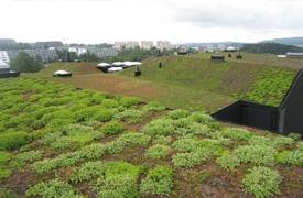 Veg Tech - leverandør av grønne tak. Eks: Rommen skole