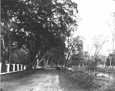 Jl Tanah Abang timur sebelum 1870, Tanah Abang oost , te Batavia voor 1870