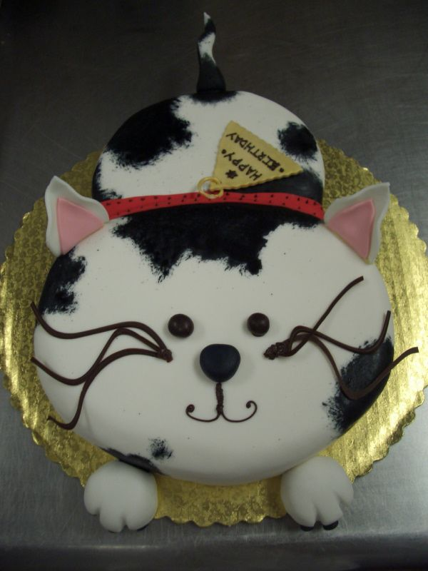 Best Cat Cakes Ideas On Pinterest Kitty Cake Kitten Cake - This cat eating a birthday cake is everything you need in life