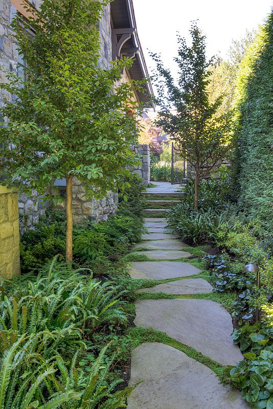 Side Yard. Love the large stones for path.