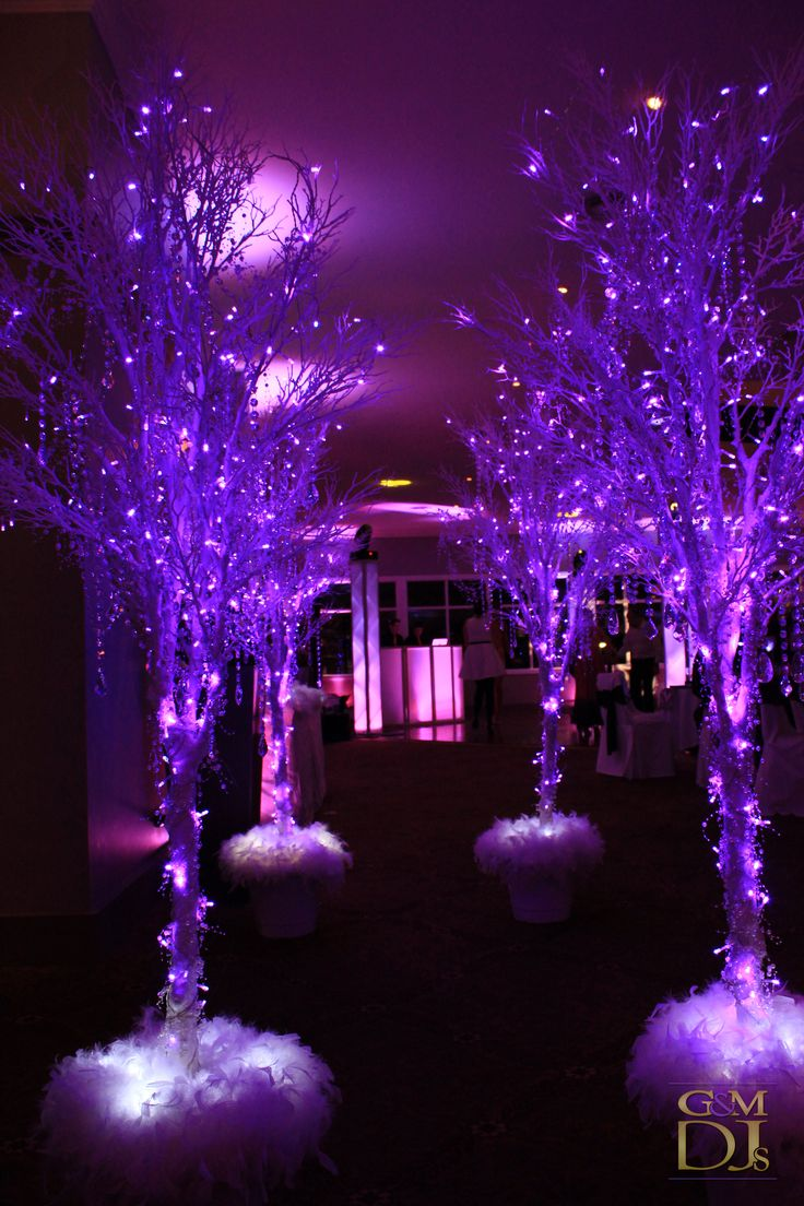purple tree lights