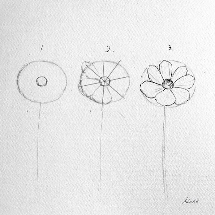 Step By Step Diy Tutorial Pretty Flowers To Draw Black Pencil Sketch White Background In 2020 Flower Drawing Tutorials Flower Drawing Easy Flower Drawings