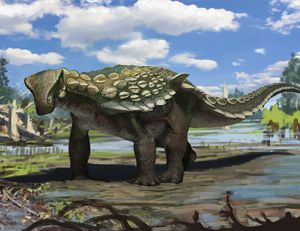 Hallan un nuevo tipo de dinosaurio en Teruel. Entra y conoce los detalles de cómo es: http://www.muyinteresante.es/ciencia/articulo/europelta-carbonensis-un-nuevo-tipo-de-dinosaurio-en-teruel-581386000132           El fémur más grande de Europa Para ver todas las fotos haz click aquí  En una mina de lign...