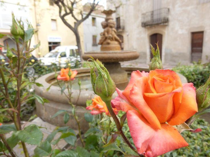 Perafort (Tarragonès, Tarragona)