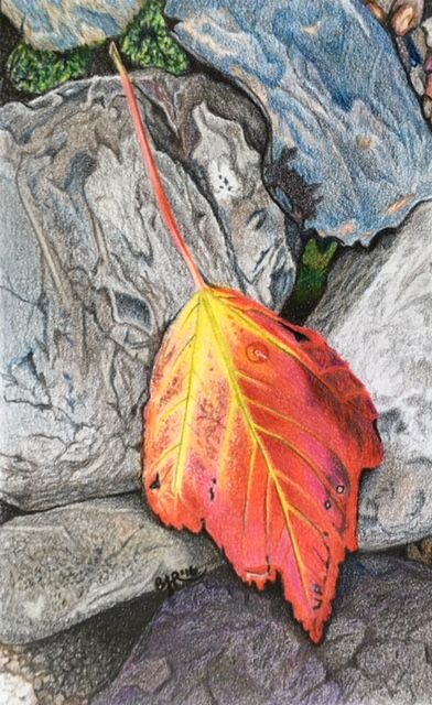 Autumn's flowers - drawn in colored pencils, 6x8 inches.