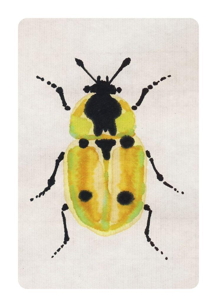 Xylodrepa quadripunctata ricepaper, ink