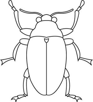 Insects coloring page 50
