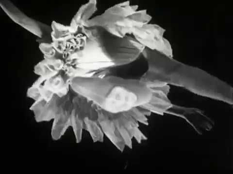 Entr'acte Dada film directed by René Clair 1924 - On MindsiMedia Home / YouTube