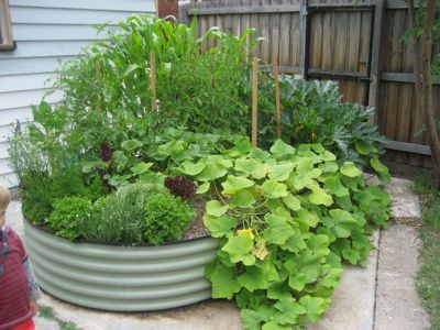 Edible Garden Ideas Edible Gardens In Small Urban Spaces