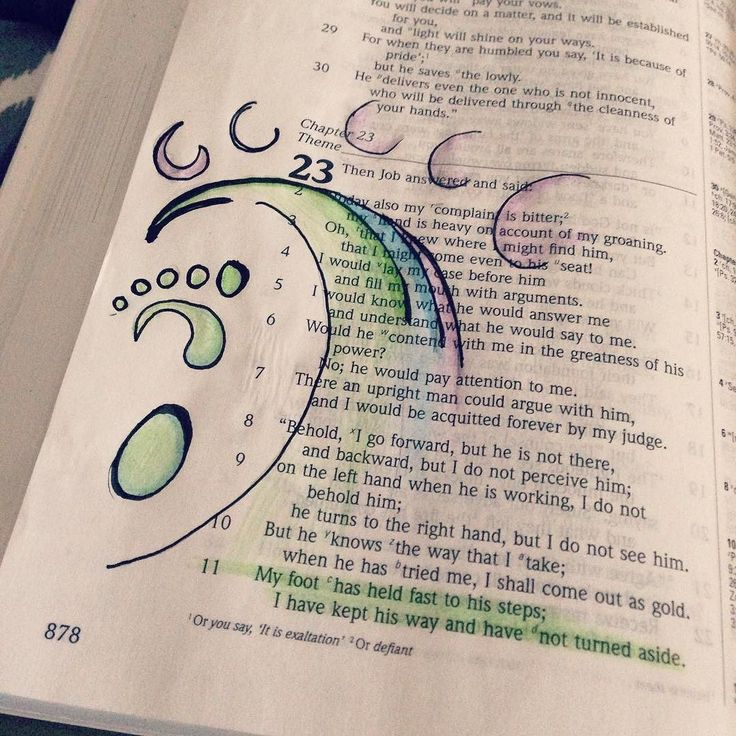 TheBookOfJob Chapter 23 with the goodmorninggirls bible