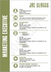 Image result for winning resume templates free