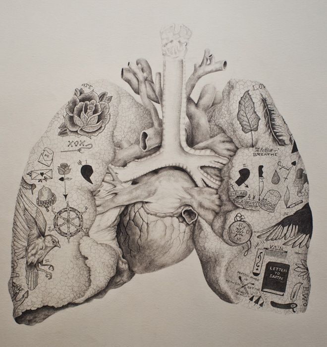 """""""My heart is a honey comb"""". Vintage inspired anatomical drawing with a twist by Andy van Dinh ༺♥༻"""