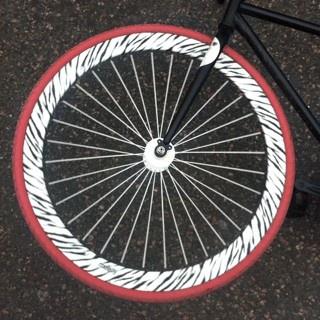 My zebra bike wheel