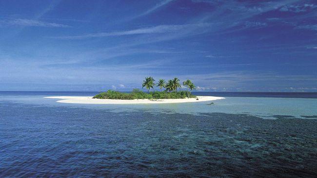 En ocean av öar. Söderhavsöarna är de mest avlägsna och isolerade i världen och här frodas unika djurarter och kulturer. Möt till exempel köttätande larver, jättekrabban som kan öppna en kokosnöt och orädda män som kastar sig ut från höga trätorn.