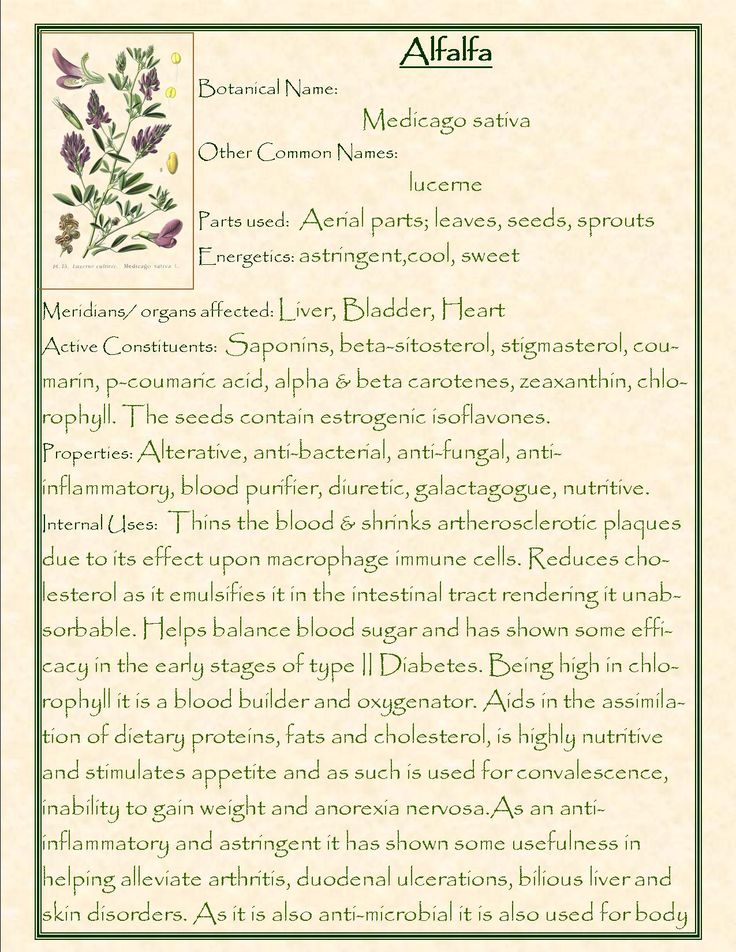 Alfalfa! Medicago Sativa. Alterative, antibacterial, anti-fungal, anti-inflammatory, blood purifier, diuretic, galactagogue, nutritive. Reduces cholesterol, balances blood sugar, supports healthy blood production and oxygenation.