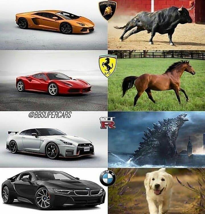 Lamborghini Ferari Gtr Bmw Memes Car Super Sports Super Cars Amazing Cars Luxury Cars