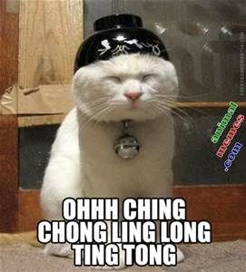 Funny Asian Memes - Bing Images