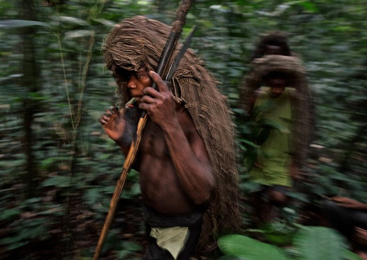 the mbuti tribe To date, no wholly satisfactory explanation has been proposed for the divi- sion of the mbuti pygmies into two types of hunting economies: net hunters.