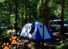 Turu.com.au Search for pet friendly camping spots across Australia, please confirm with individual parks as sometimes they may not allow pets during peak periods.